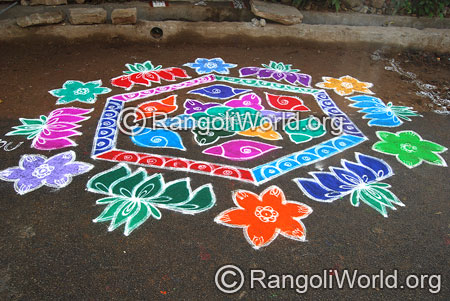 Beautiful lotus kolam aug2014