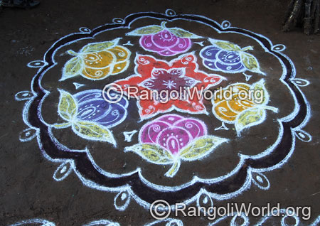 Rose pulli kolam aug2014