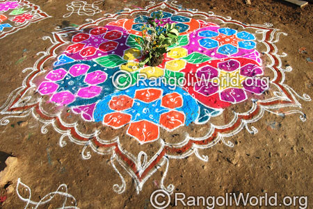 Star kolam aug2014