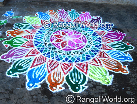 Double stroke bird freehand rangoli for festival feb