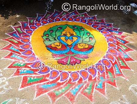 Peacock freehand rangoli for festival mar