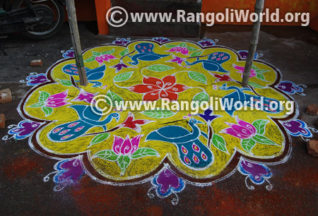 Peacock and lotus flowers rangoli 2016
