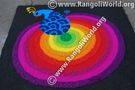 Rainbow peacock rangoli jan 2016 festival