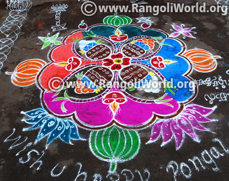 Pongal celebration rangoli design 2017